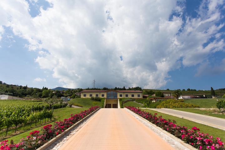Monte Zovo: Touren und Verkostungen