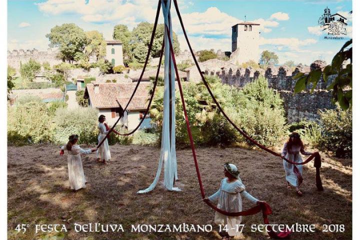 Festa dell' Uva Monzambano