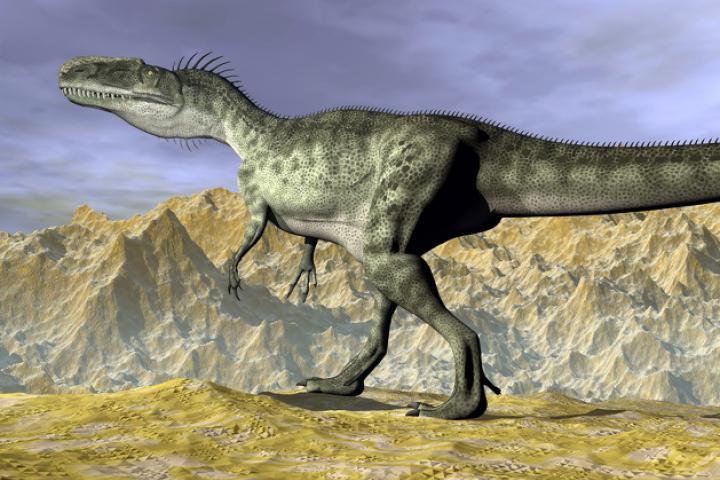 Dinosaurierspuren im Fels