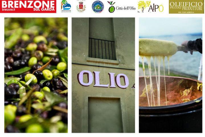 Tuttolio - Nationaler Tag des Spaziergangs unter den Olivenbäumen