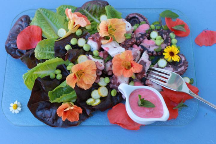 Octopussalat mit Blüten und Himbeerdressing