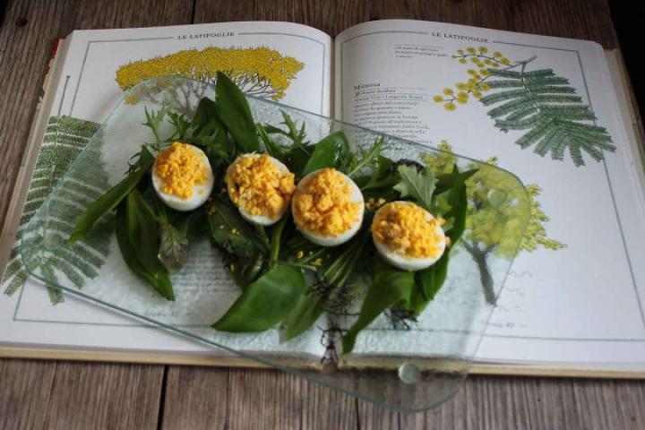 Mimosen-Eier mit Wildkräutersalat