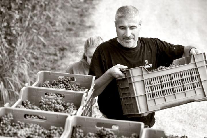 Nachhaltigkeit als Betriebsphilosophie - Der Agriturismo L'Unicorno setzt auf Bio