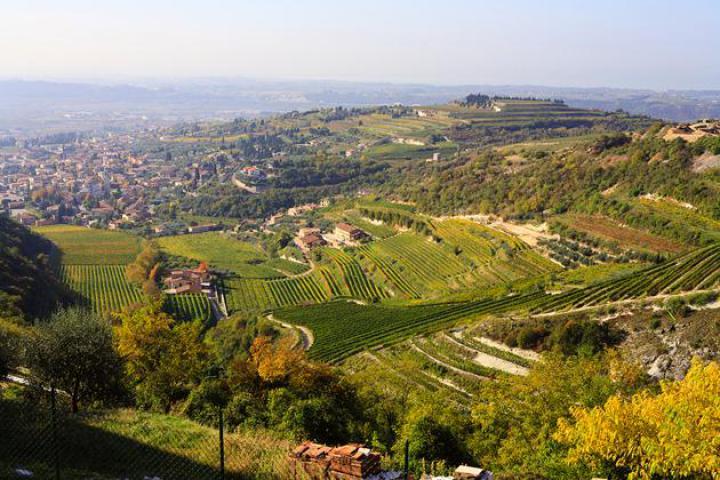 Magnalonga - Gourmetspaziergang im Valpolicella