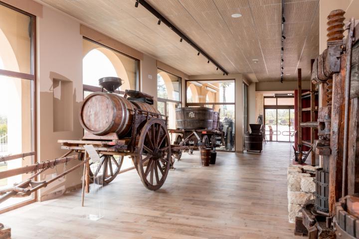 Das Weinmuseum von Bardolino & Cantina Zeni ab sofort wieder geöffnet